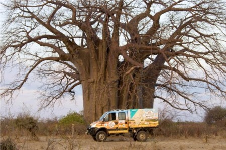 iveco daily in africa